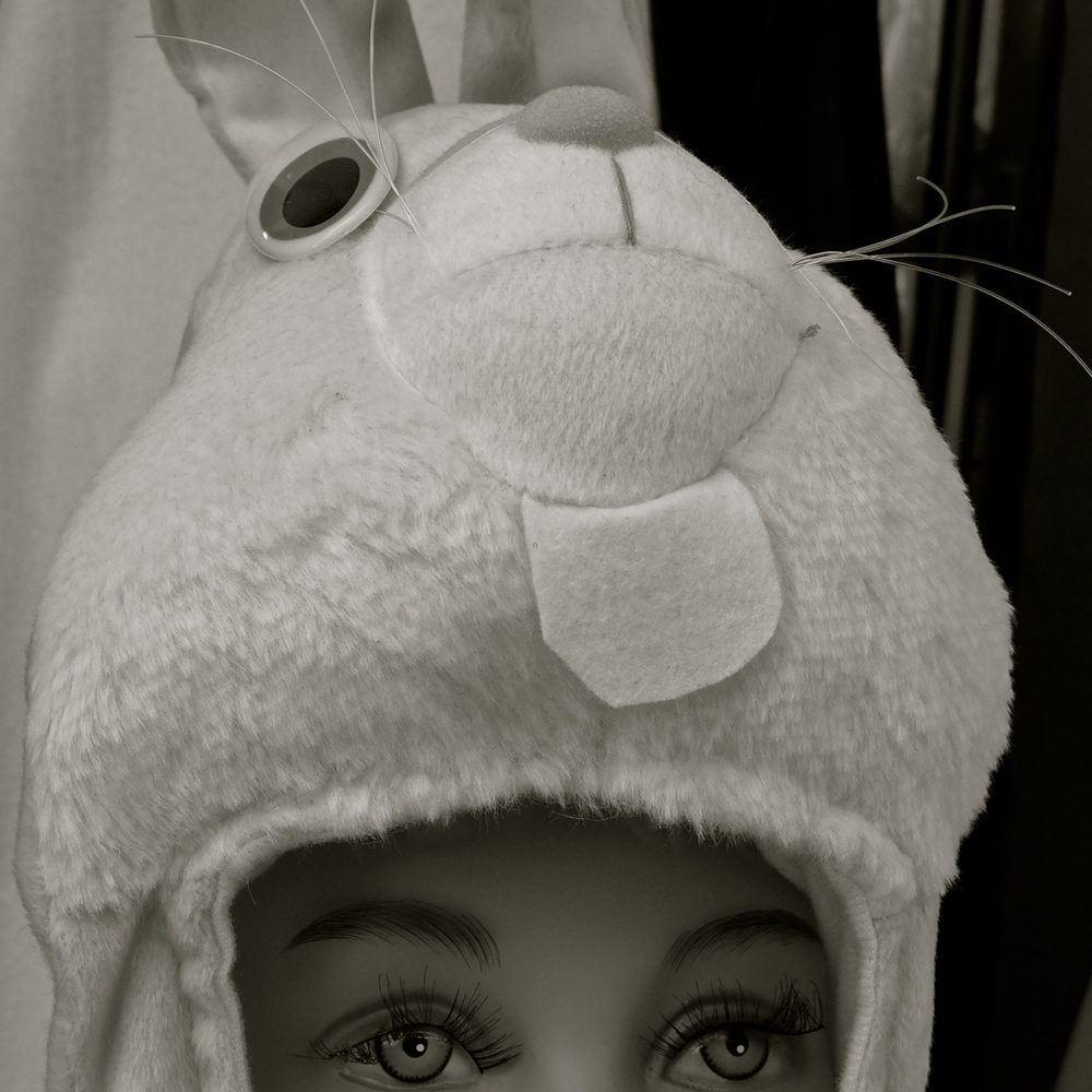 Conejo de carnaval