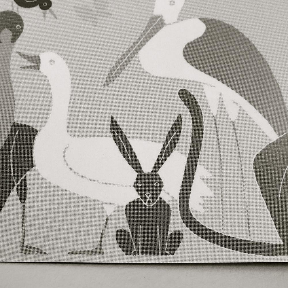 Conejos Jean Manuel Duvivier - 2