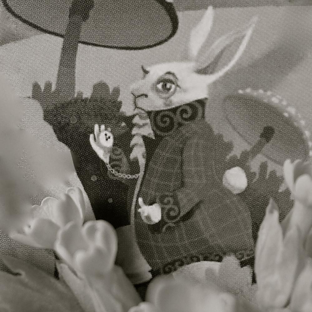 Conejo juego