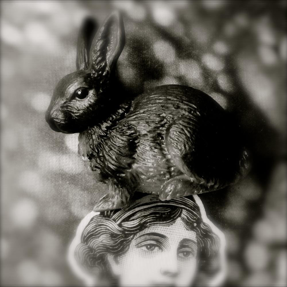 Conejo de Sara Huete - 1