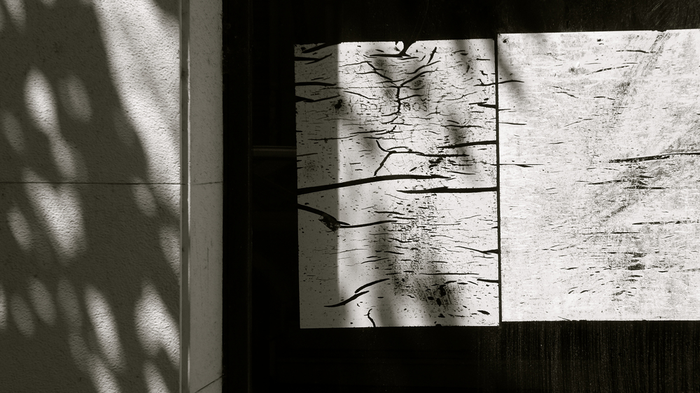 Sombras de amor - 1