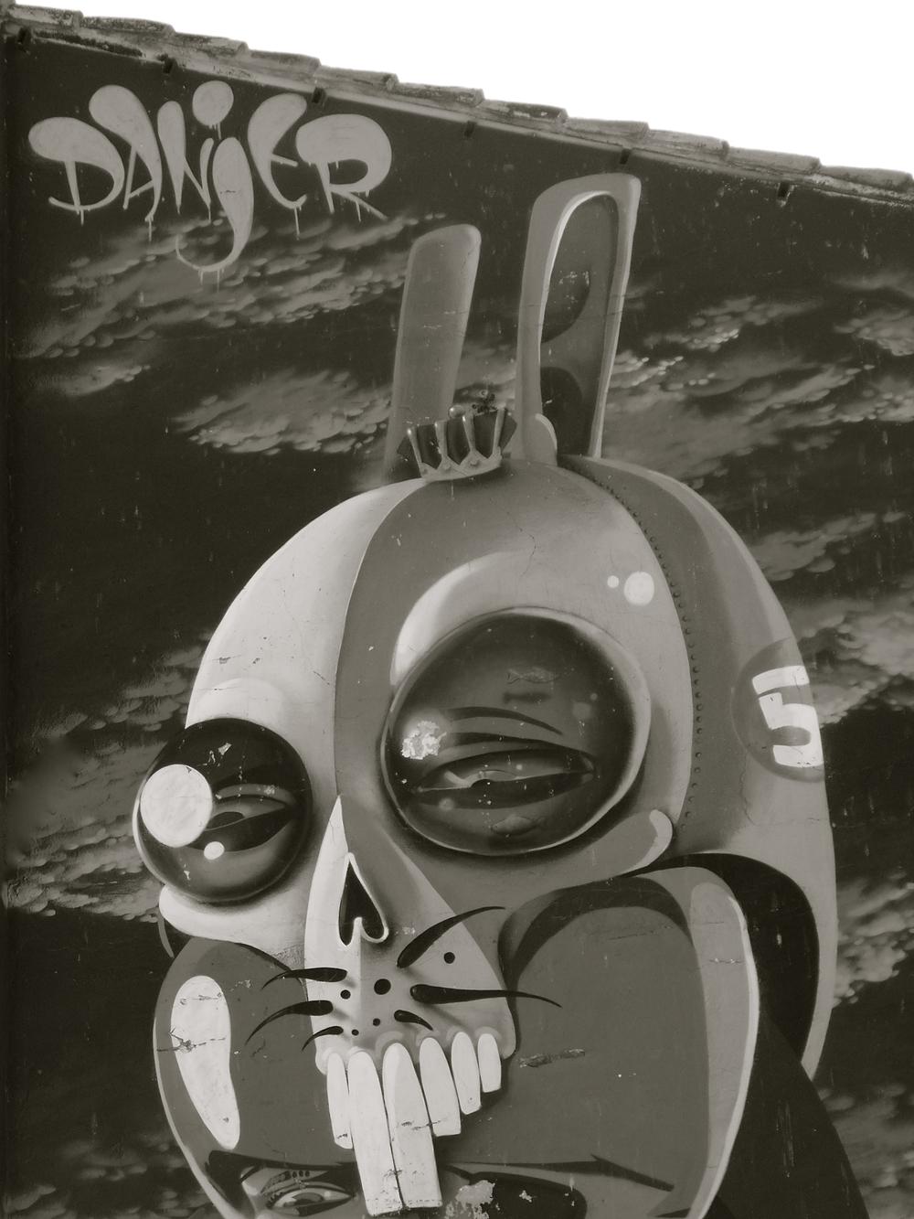 Conejo Danjer - 2