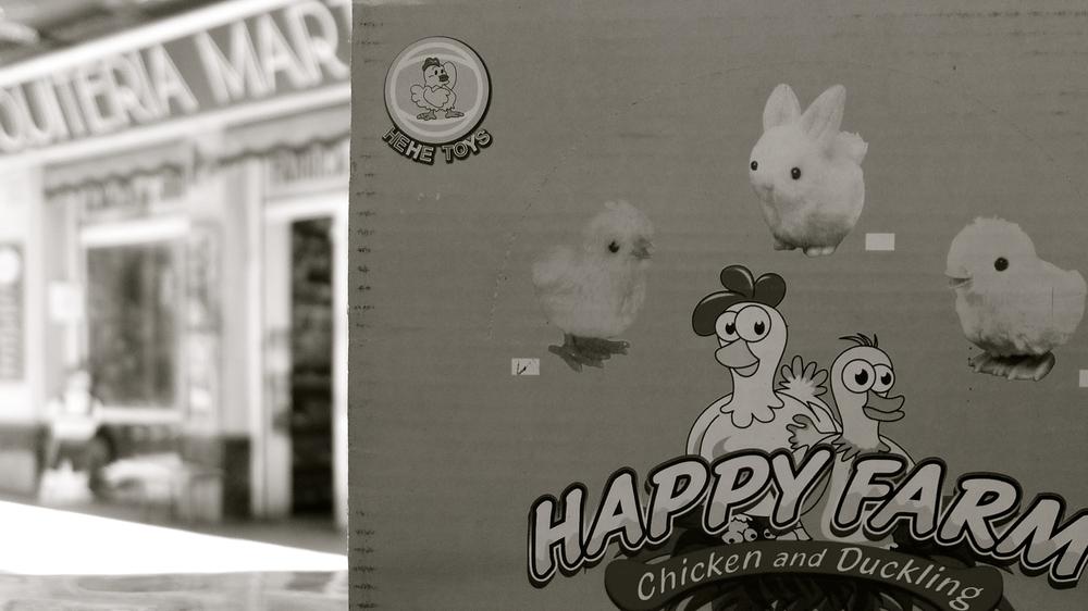 Conejo feliz - 20
