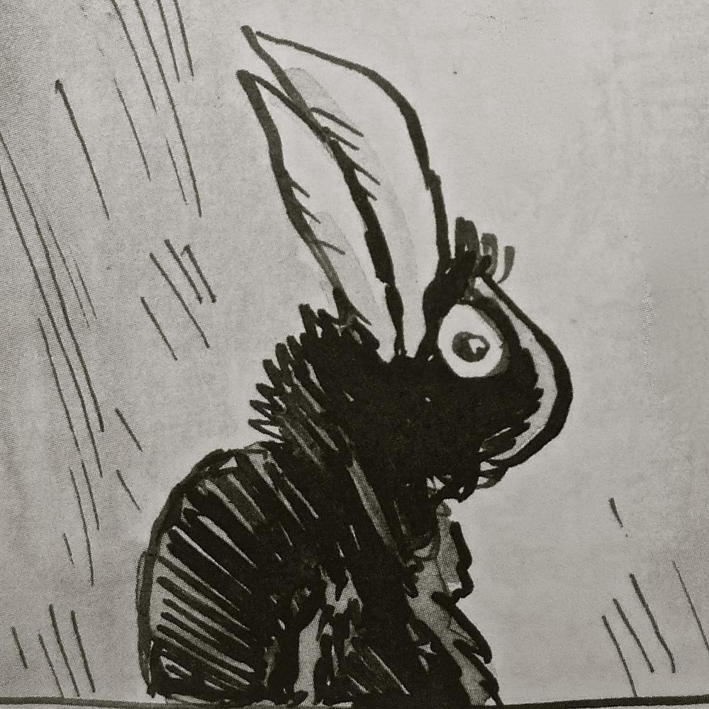 Conejo de Azagra