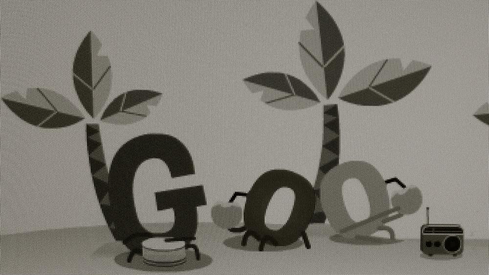 Google palmeras - 3