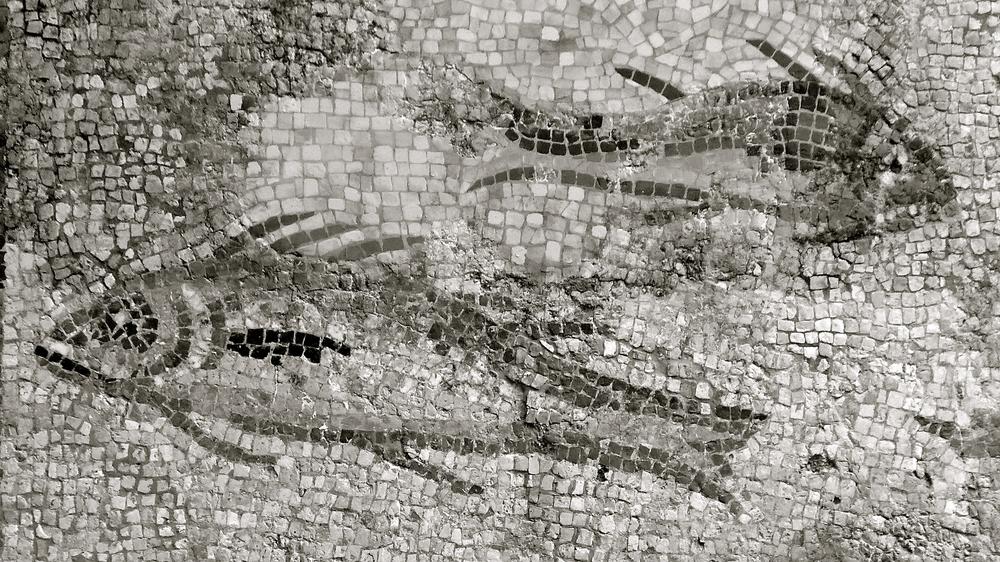 Piscis 2 mosaico