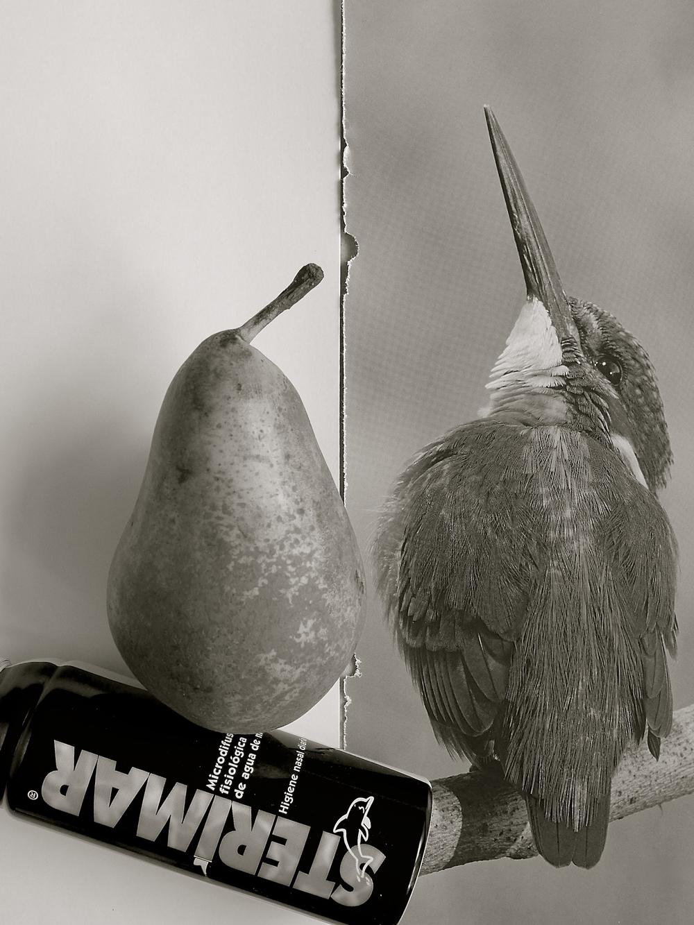 La pera y el martín - 1