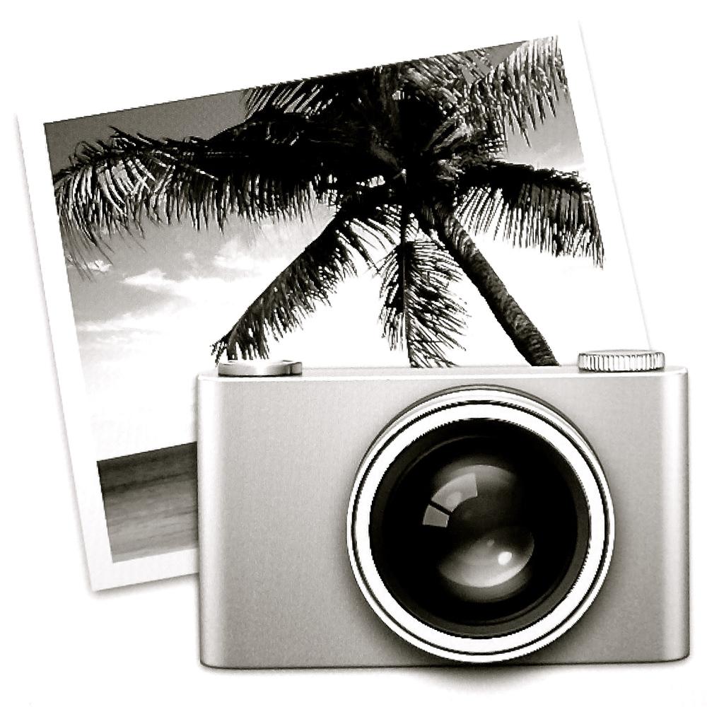 Palmera icono iPhoto