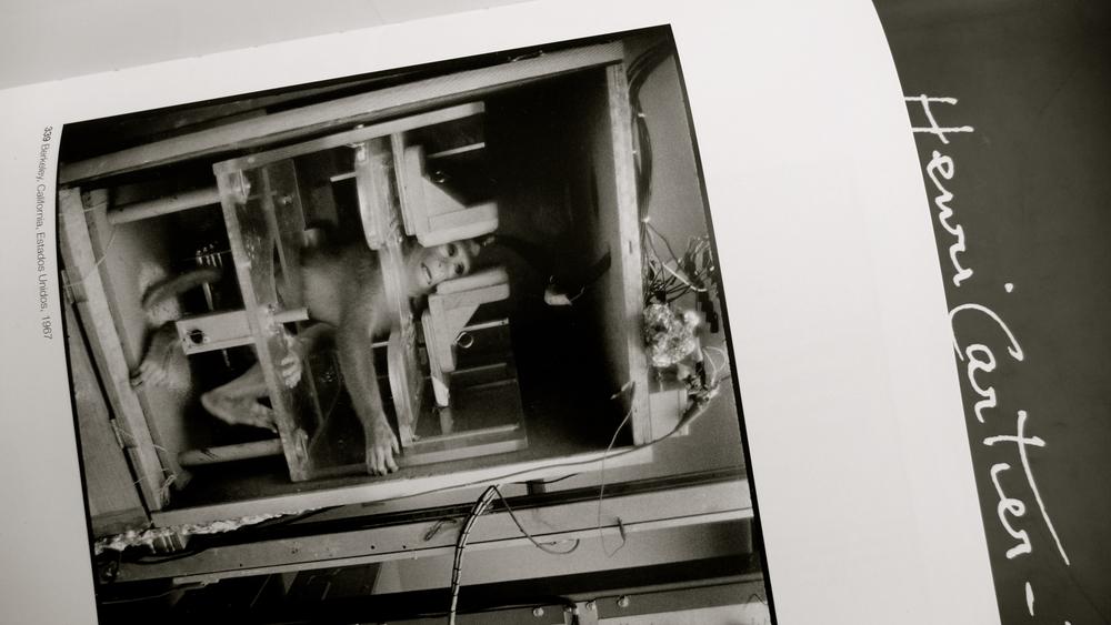 Monada Henri Cartier Bresson