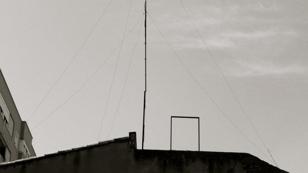 Antera y rectángulo - 1