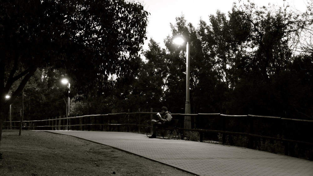 Lector nocturno.jpg
