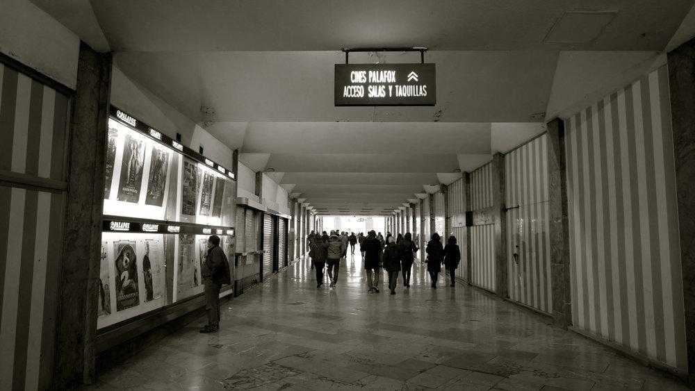 Paseo con Ecrevisse - 34