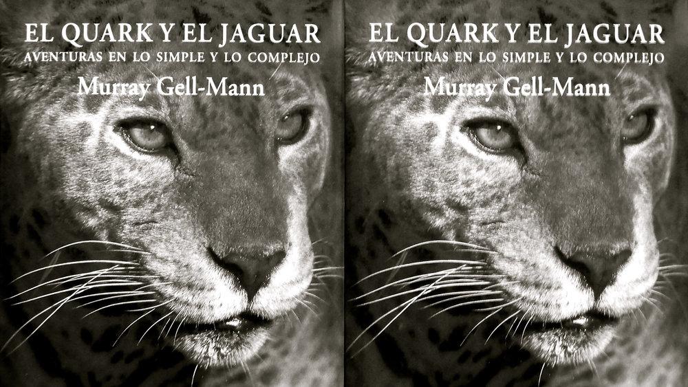 El Quark y el Jaguar - 9