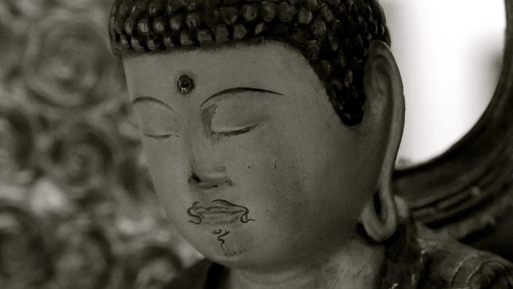 Buda bigote