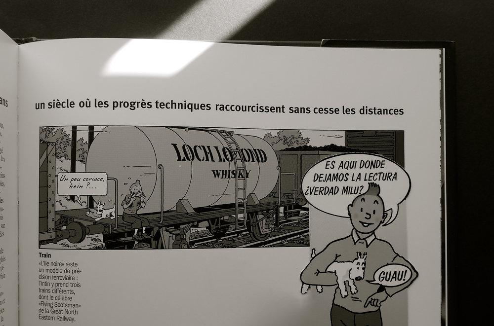 Tintin tren