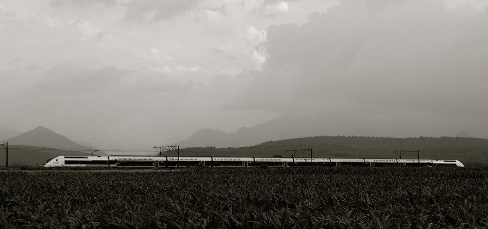 Tren campos maíz