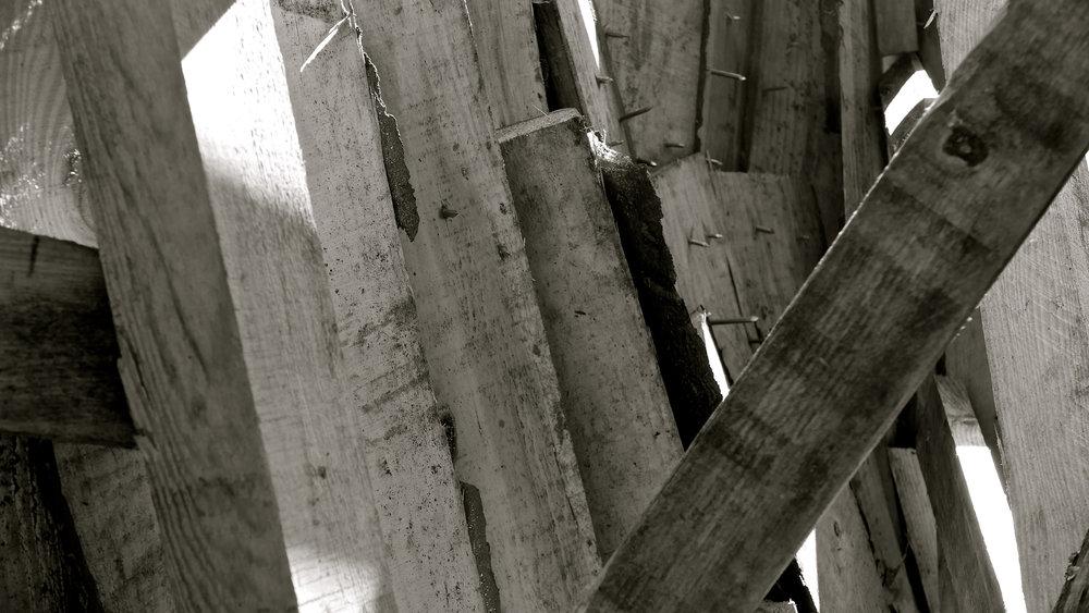 Corazón gran árbol Escaladieu - 6