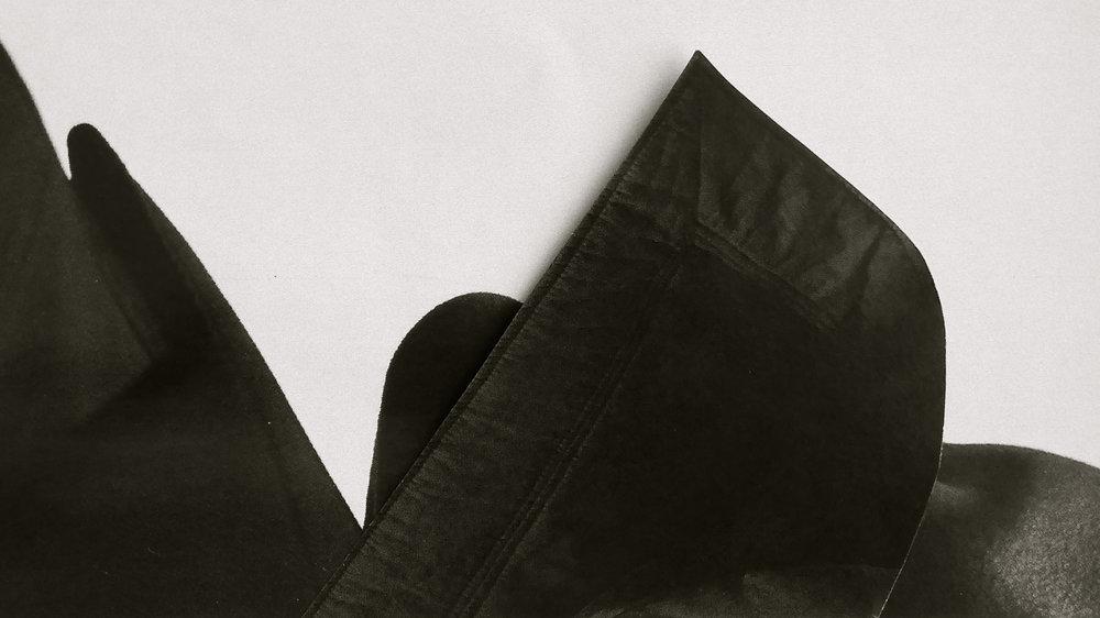 Fragmentos de Rory Payne - 2