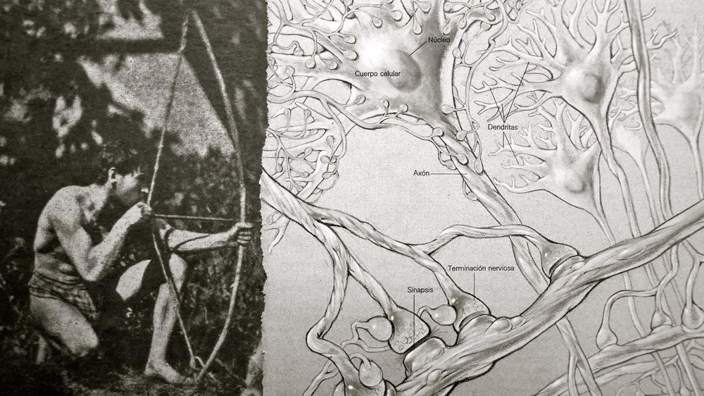El grito de Cajal