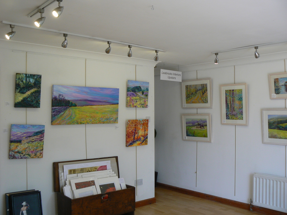 my exhibition Leabrooks May 3014 008.JPG