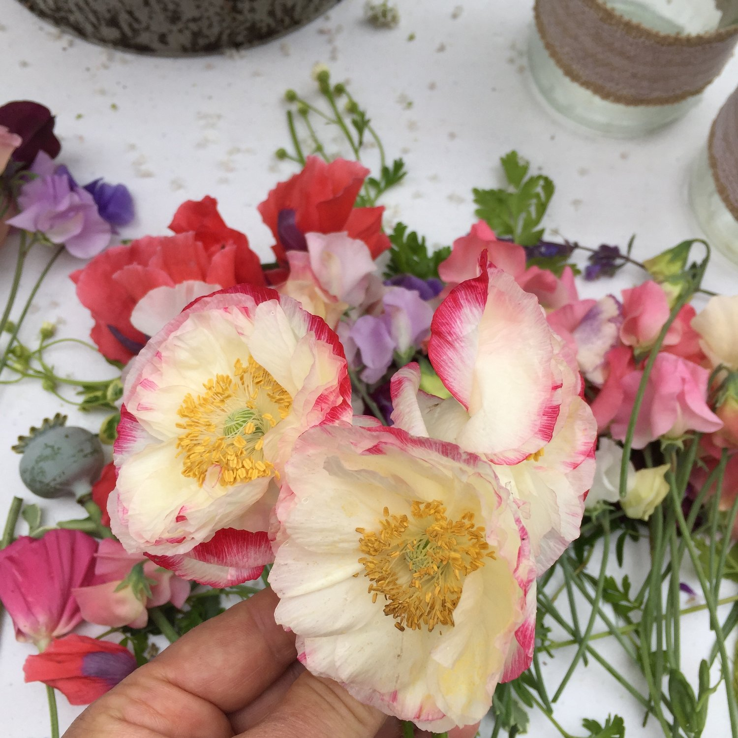 Royal wedding fever which seasonal flowers will meghan have chosen this year with the long winter and cold wet spring the cutting garden has been a little slower to get going although with this lovely spell of warmer izmirmasajfo