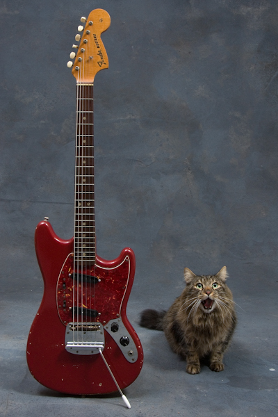 Momo and 1966 Fender Mustang