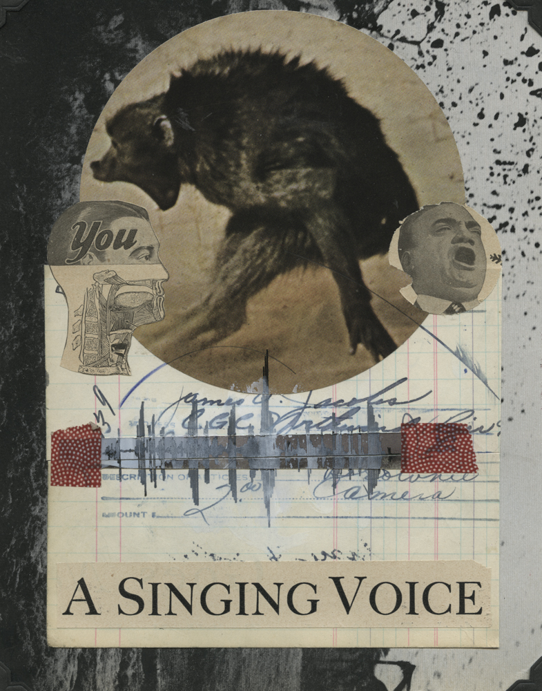 A Singing Voice