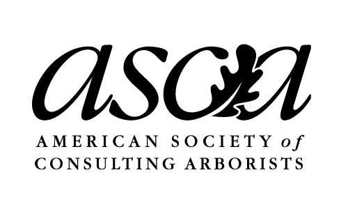 Why Hire an ASCA Member? Click Here!