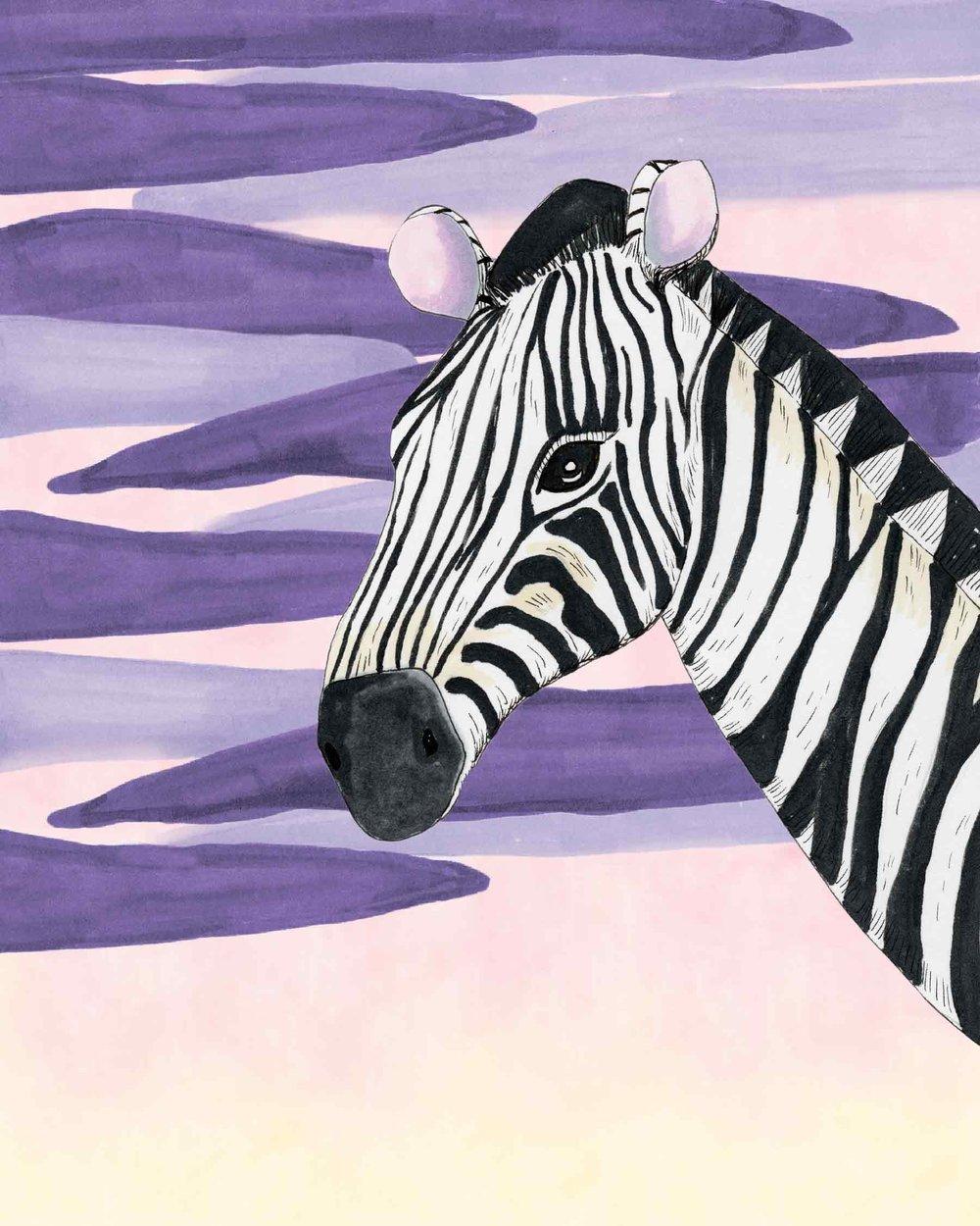 Zebra-Full-Color-41118.jpg