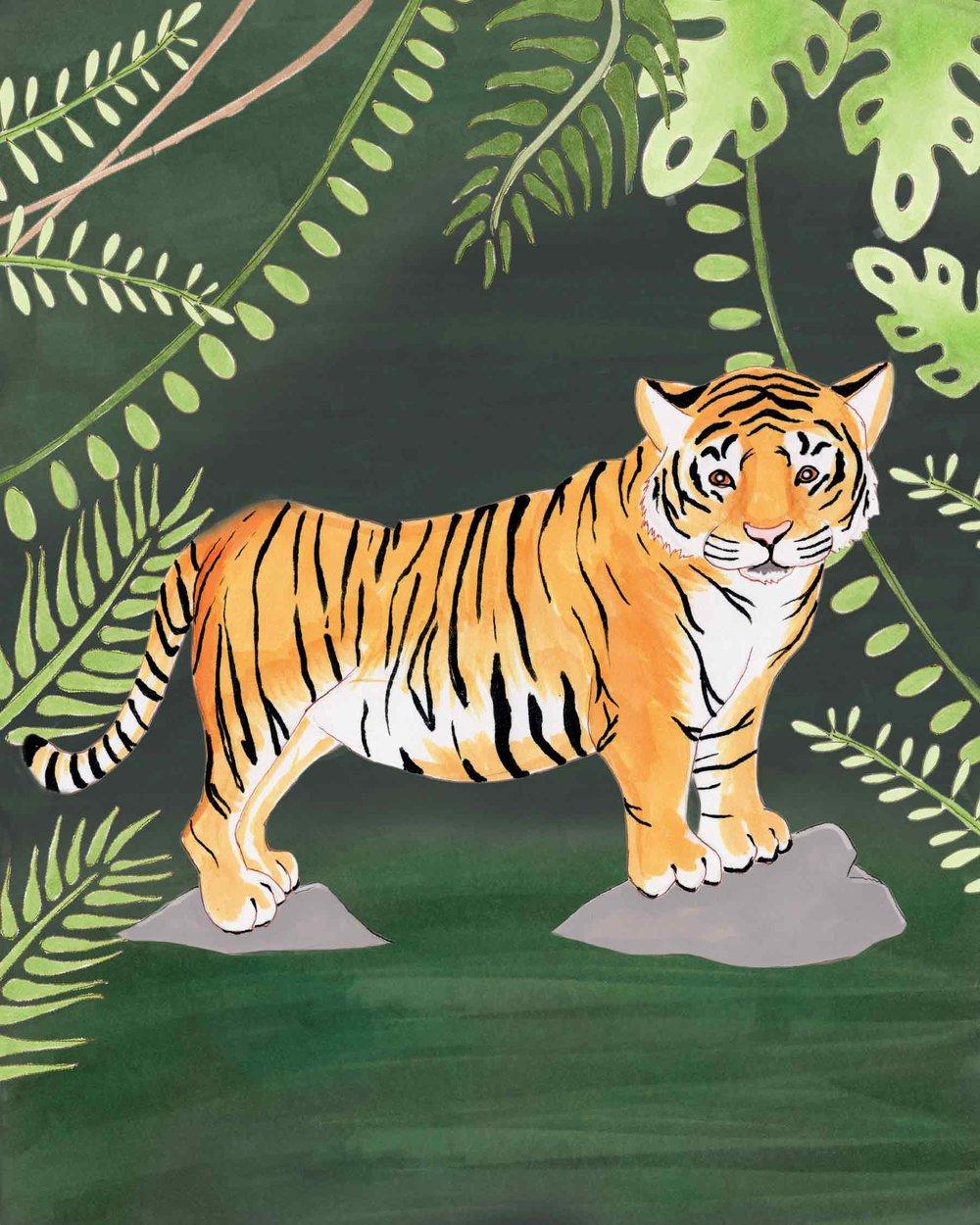 Tiger-Full-Color-41118.jpg