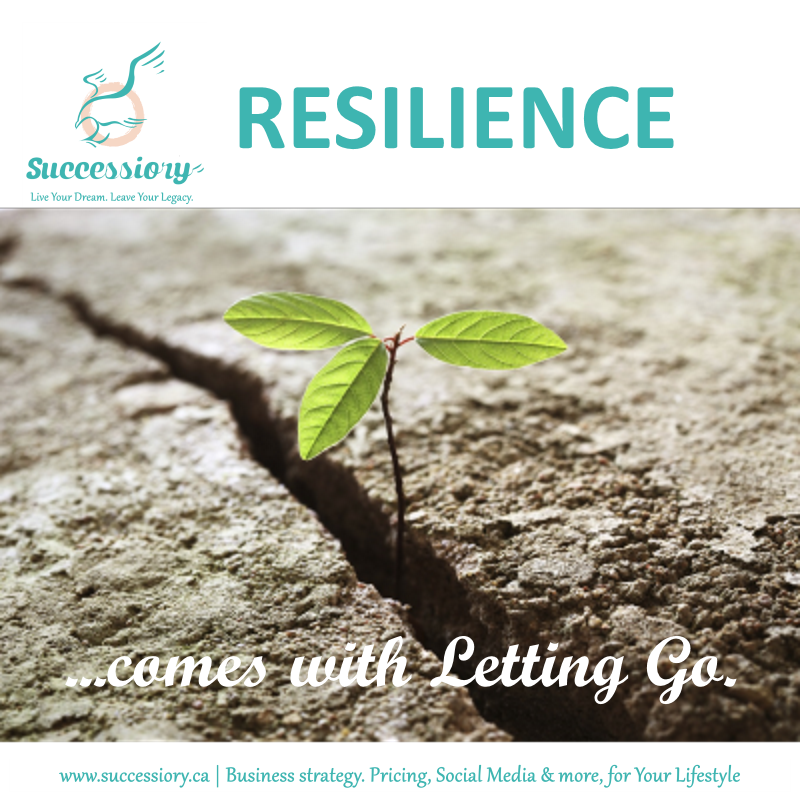 2015_Entrepreneur-Mastermind_Resilience(Successiory).png