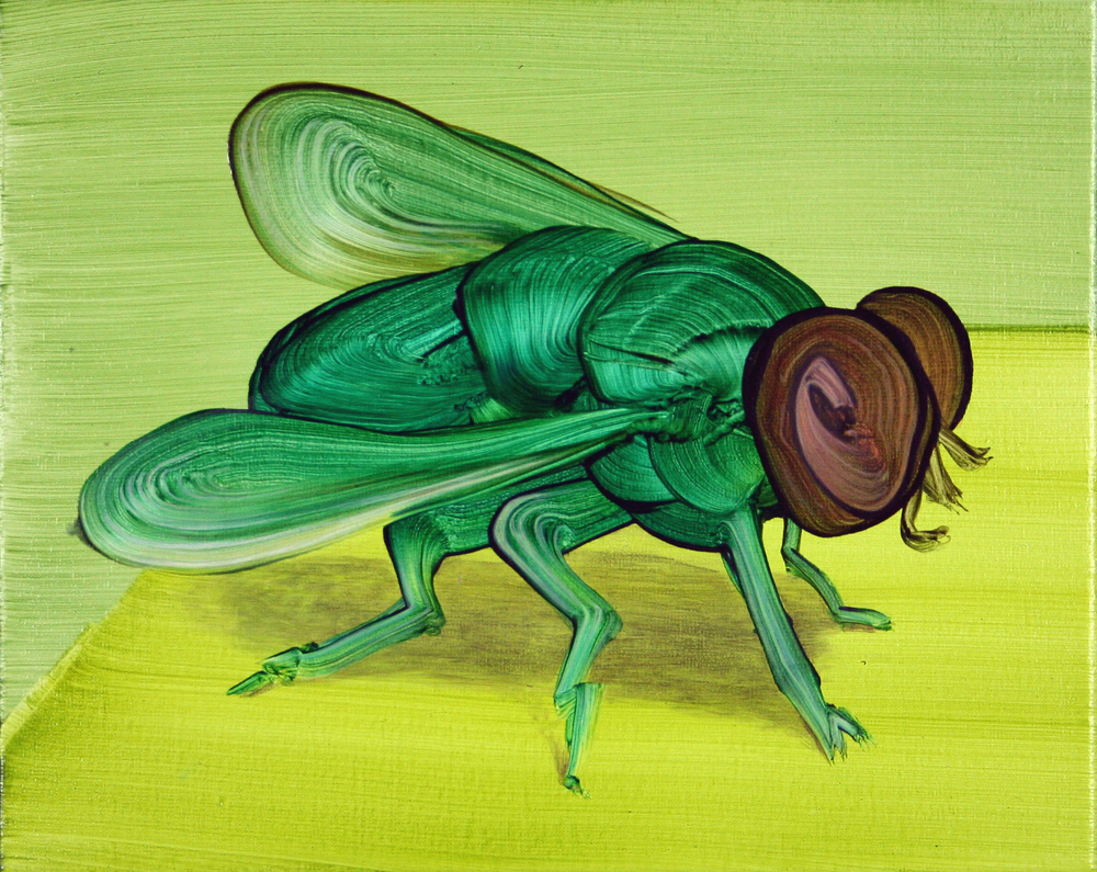 Little Fly (Green), 2015, oil on canvas; 24 x 30 cm