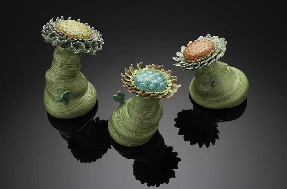 Flowers, 2009