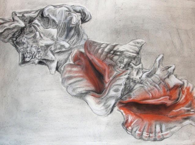 charcoal, conte crayon  2010