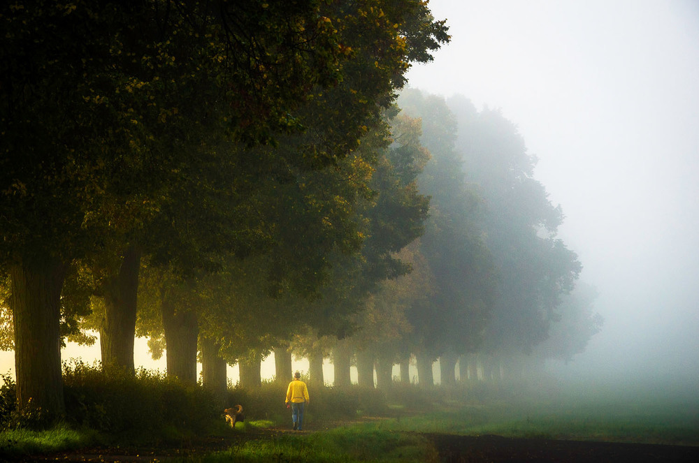 Linden-Halballee, Lichtenfels
