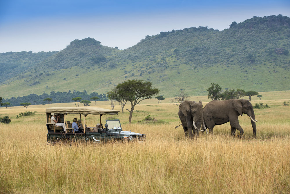 The Reason Safaris Cost So Much Might Surprise You - Travel + Leisure (July 2018 issue)