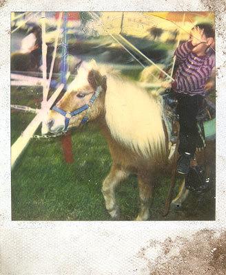 boyonhorse