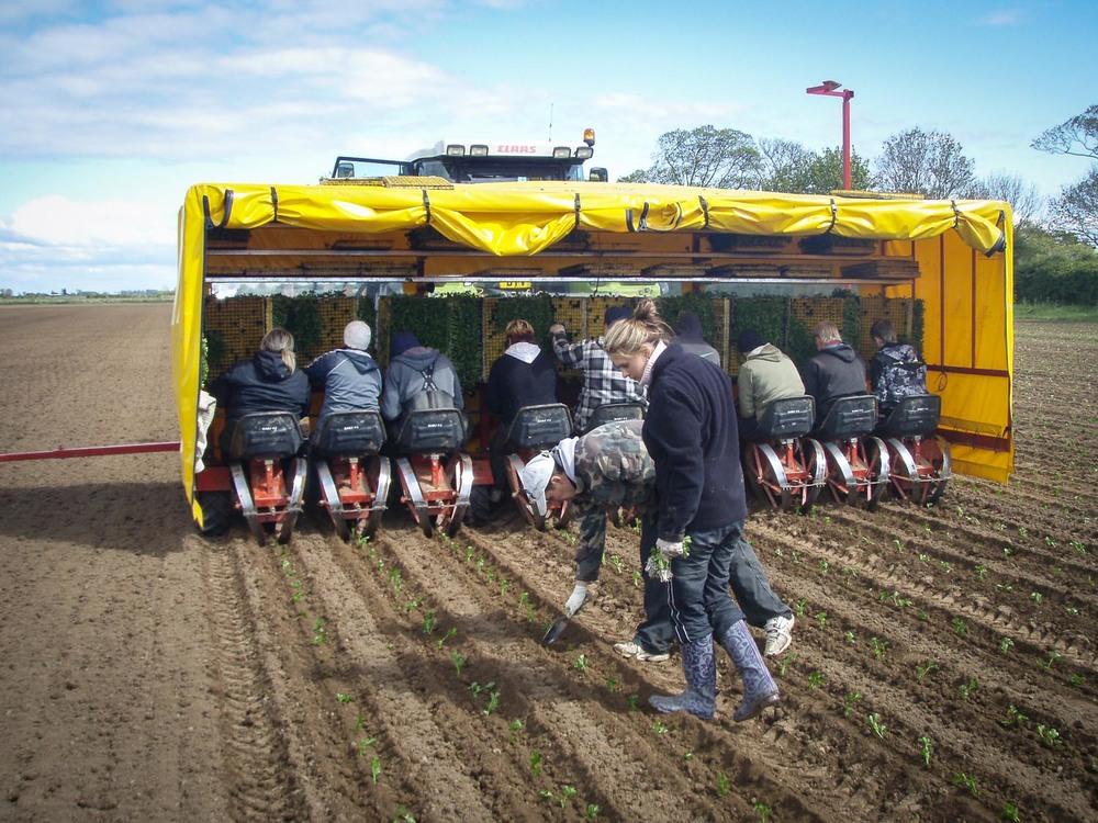farm images-13.jpg