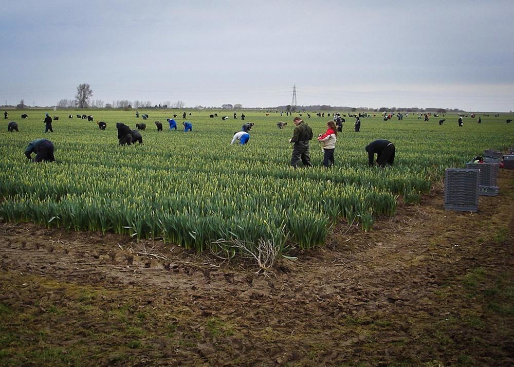 farm images-6.jpg