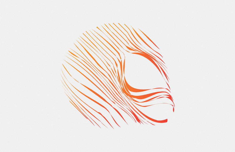 sk-identity-06.jpg