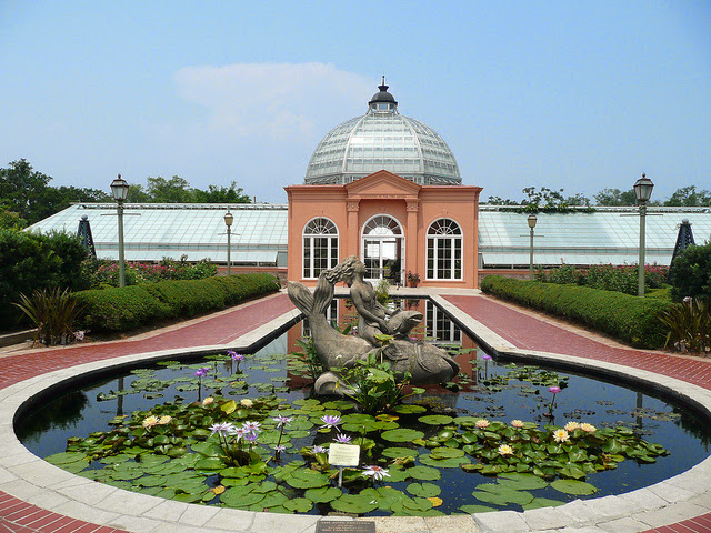 New Orleans Botanical Garden - City Park.jpg