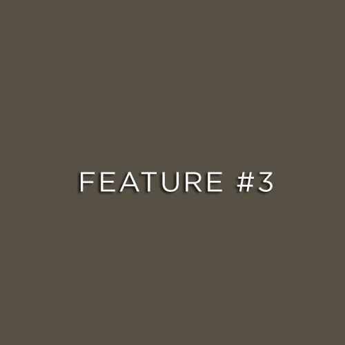 feature3.jpg