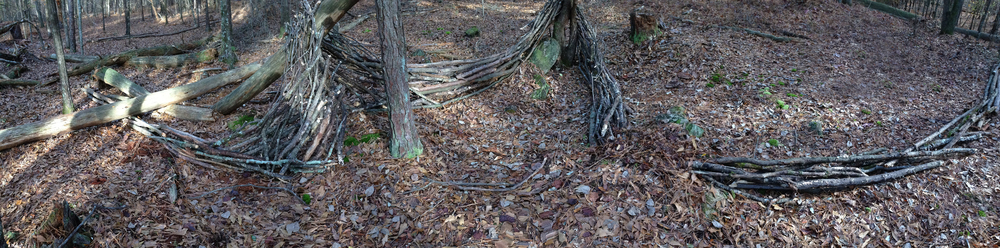 Wood flow. Sandy Creek Park. Athens, GA. Fall 2013.