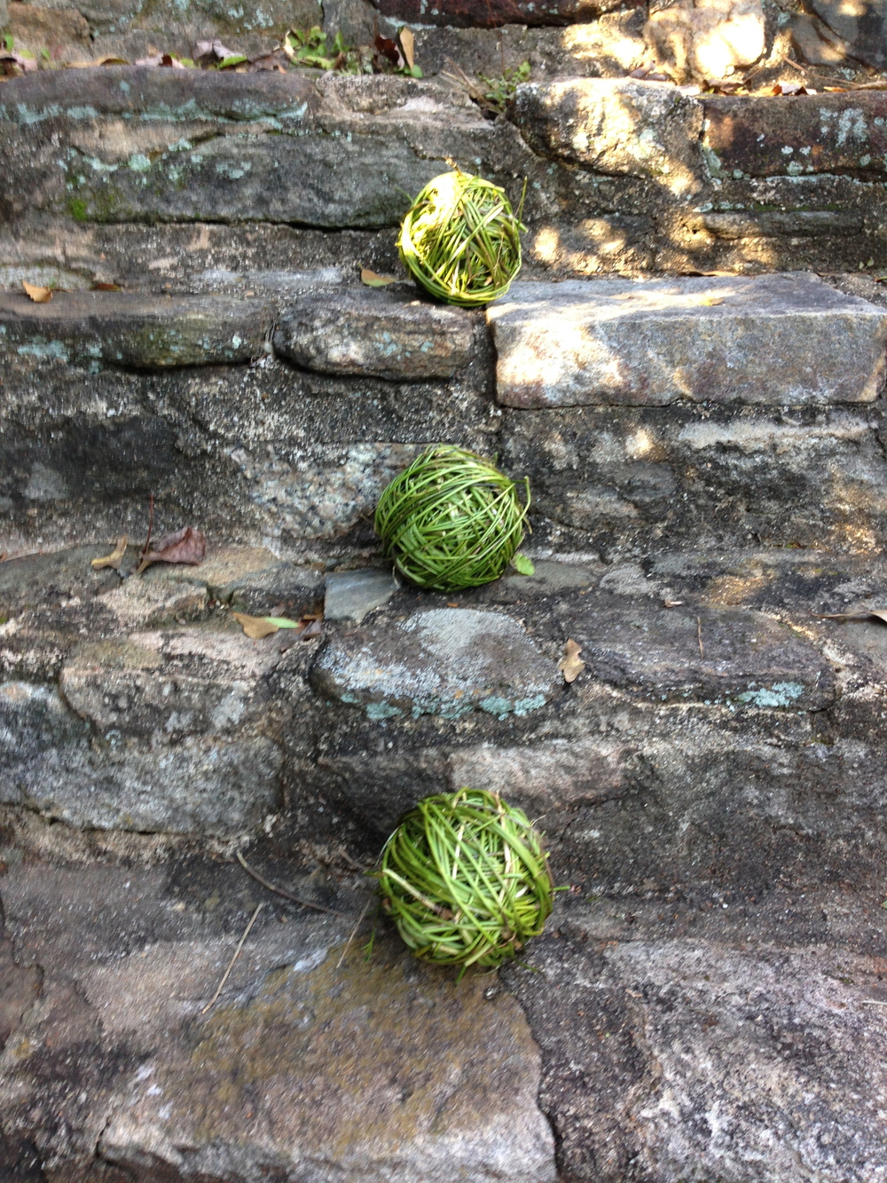 Vines wrapped into balls, on stone steps.