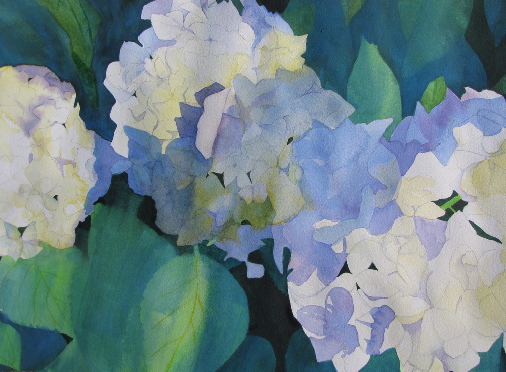 Hydrangea Blues - SOLD