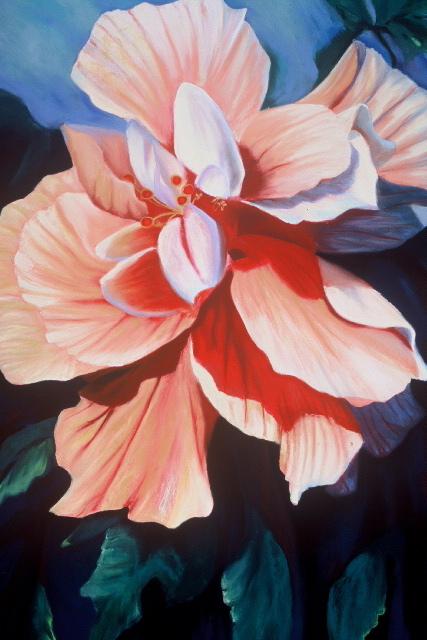 Double Hibiscus.jpg