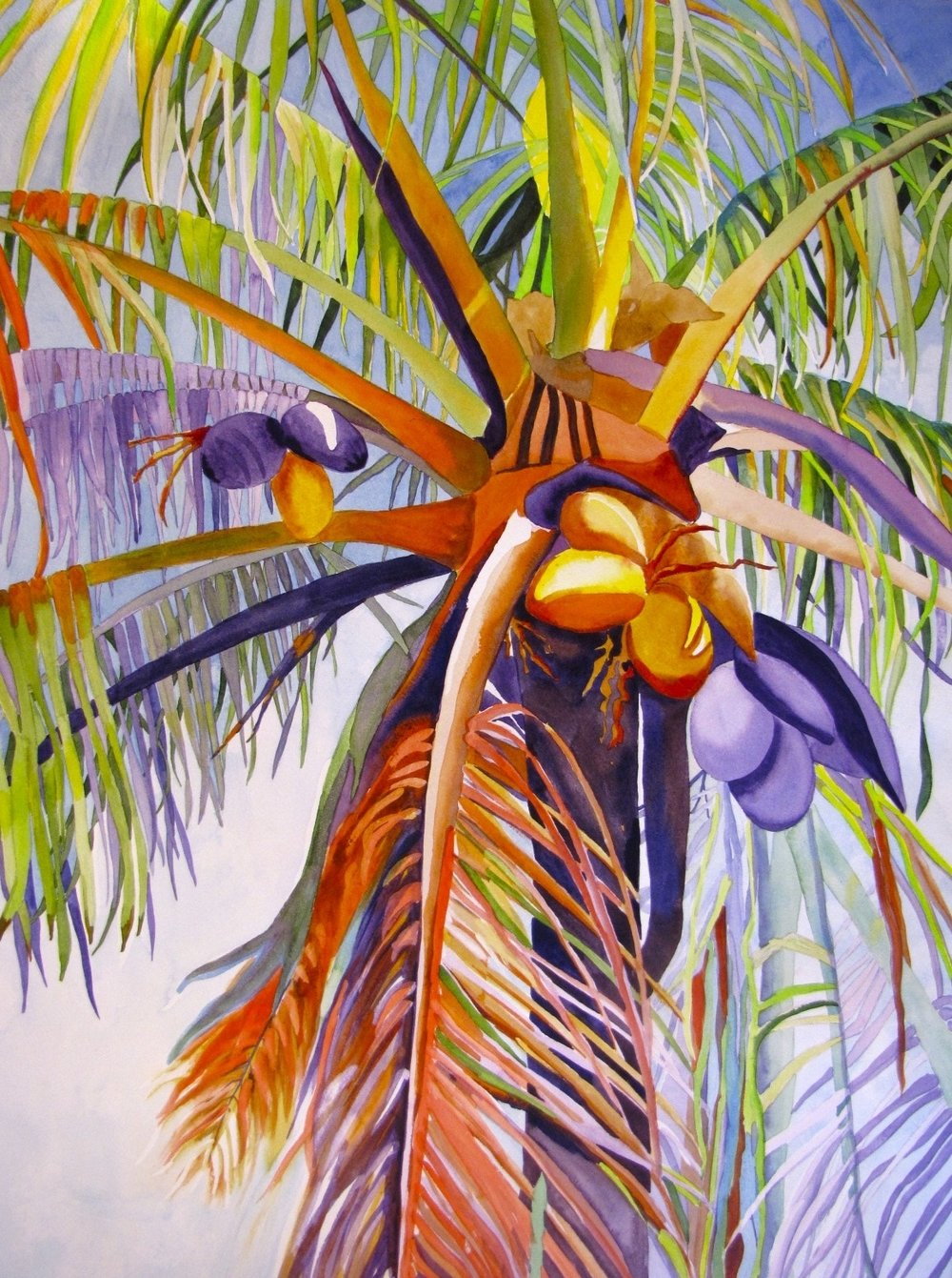 Backyard Palm