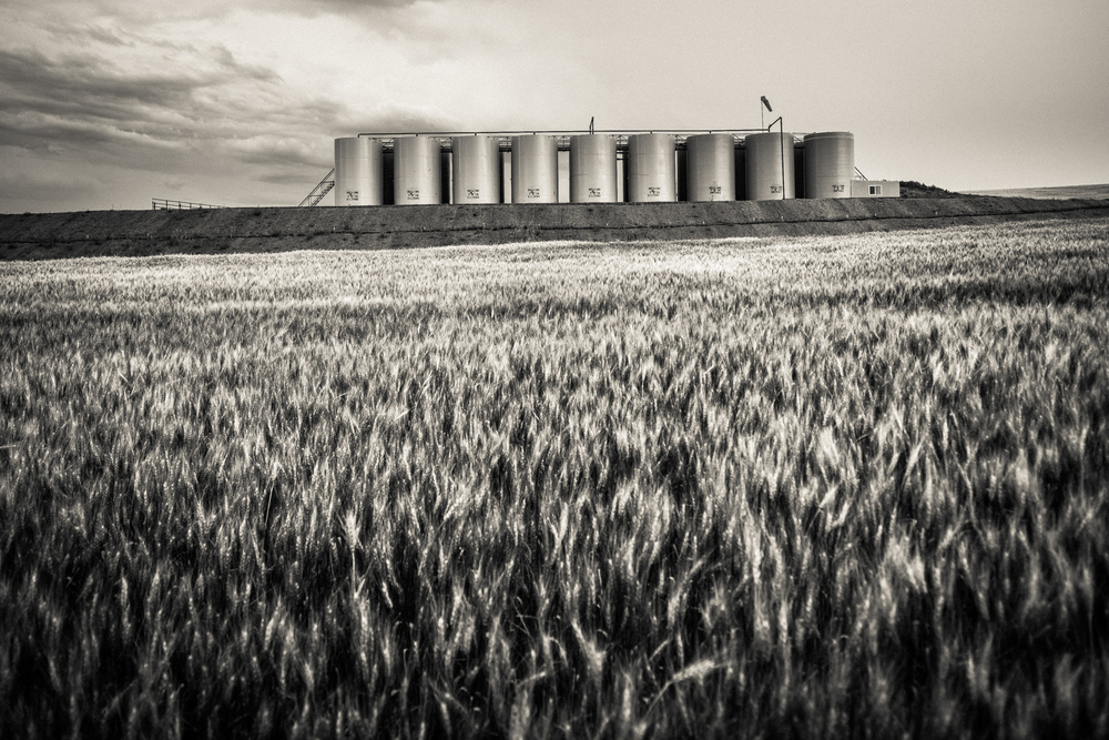 Prior to the current boom of oil production in western North Dakota,  dry wheat farming was the primary source of income for area residents. Farmers will tell stories of growing up without money for shoes, but now find themselves millionaires. The dominant narrative amongst long time residents is of economic advancement, not environmental woe.