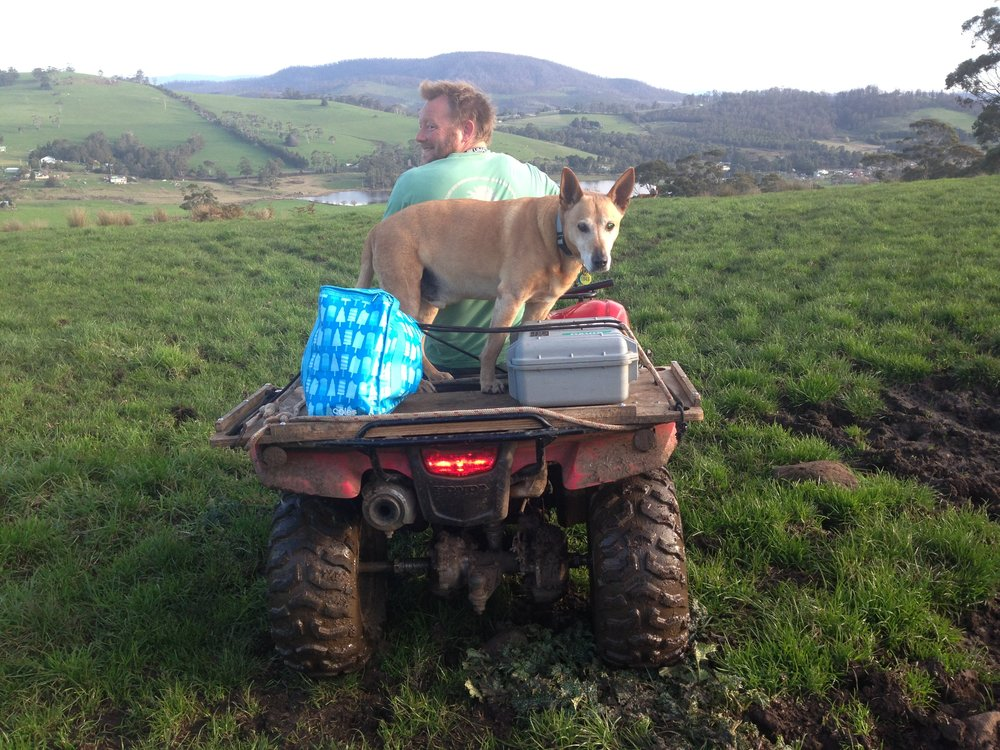 Helping Iain in the early days on the farm.
