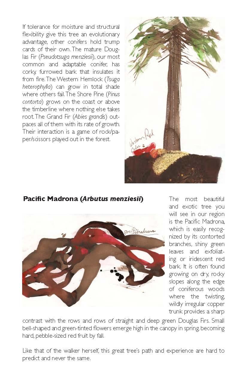 LONGWALKSURVIVALGUIDE_2012FINAL10_Page_29.jpg